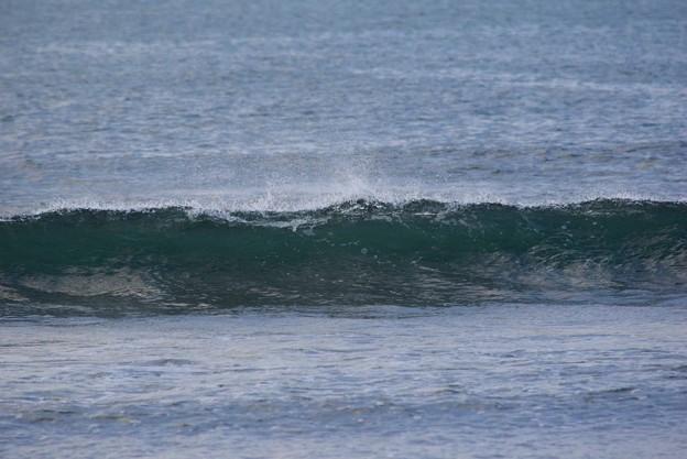 今朝の湘南・鵠沼海岸の波はすねからひざサイズ #湘南 #藤沢 #海 #波 #wave #surfing #mysky