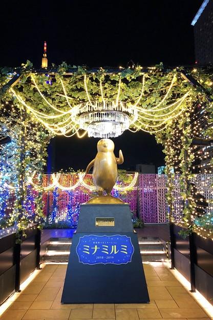 ミナミルミのペンギンモニュメント #新宿 #東京 #クリスマス #イルミネーション #shinjuku #christmas #illumination