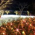 Photos: キラキラの江ノ島亀ヶ岡広場 #湘南 #藤沢 #海 #クリスマス #イルミネーション #wave #illumination #christmas