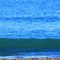 Photos: 今朝の湘南・鵠沼海岸の波はすねからひざサイズ  #湘南 #藤沢 #海 #波 #wave #surfing #mysky