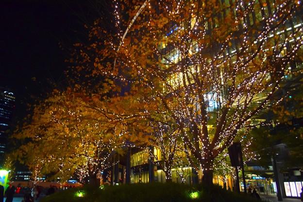 キラキラのグランフロント大阪 #大阪 #クリスマス #イルミネーション #osaka #illumination #christmas #xmas