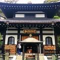Photos: 長谷寺阿弥陀堂 #湘南 #鎌倉 #寺 #長谷寺 #temple #kamakura #mysky #flower #花