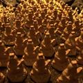 長谷寺弁天像 #湘南 #鎌倉 #寺 #長谷寺 #temple #kamakura #mysky #flower #花
