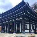 長谷寺観音堂 #湘南 #鎌倉 #寺 #長谷寺 #temple #kamakura #mysky #flower #花
