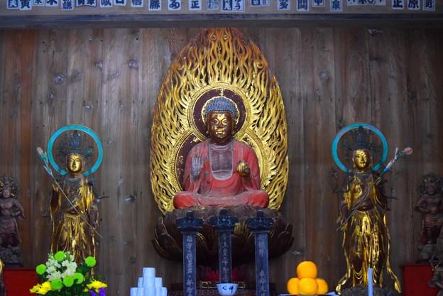 海蔵寺薬師如来像 #湘南 #鎌倉 #kamakura #寺 #temple #mysky #花 #flower