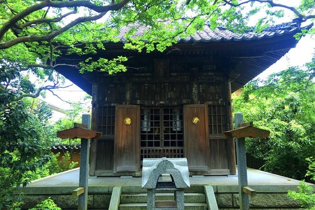 宝戒寺 聖徳太子堂 #鎌倉 #湘南 #寺 #花 #kamakura #temple