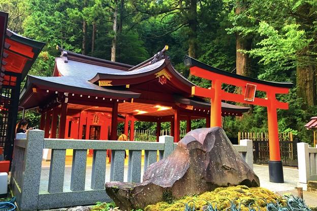 九頭竜神社 #箱根 #hakone #mysky #shrine #神社