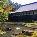 Photos: 円覚寺方丈庭園 #鎌倉 #湘南 #寺 #kamakura #北鎌倉 #temple #紅葉 #花 #flower #autumnleaves #円覚寺