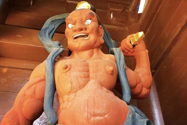 Photos: 高徳院仁王・阿形像 #湘南 #鎌倉 #寺 #紅葉 #autumnleaves #temple