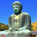 Photos: 蒼天と鎌倉大仏 #湘南 #鎌倉 #寺 #紅葉 #autumnleaves #temple