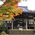 Photos: 安国論寺本堂 #湘南 #鎌倉 #kamakura #寺 #temple #autumnleaves #紅葉 #黄葉 #mysky