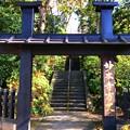 Photos: 妙本寺方丈門 #湘南 #鎌倉 #kamakura #寺 #temple #紅葉 #autumnleaves #mysky