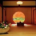 明月院本堂丸窓 #鎌倉 #北鎌倉 #湘南 #明月院 #寺 #紅葉 #kamakura #temple #autumnleaves