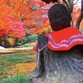 大地を見つめる赤地蔵@明月院 #鎌倉 #北鎌倉 #湘南 #明月院 #寺 #紅葉 #kamakura #temple #autumnleaves