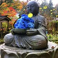 明月院花想い地蔵 #鎌倉 #北鎌倉 #湘南 #明月院 #寺 #紅葉 #kamakura #temple #autumnleaves