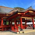 鶴岡八幡宮舞殿 #鎌倉 #神社 #shrine #紅葉 #autumnleaves #kamakura #鶴岡八幡宮