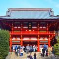 賑わう鶴岡八幡宮拝殿 #鎌倉 #神社 #shrine #紅葉 #autumnleaves #kamakura #鶴岡八幡宮