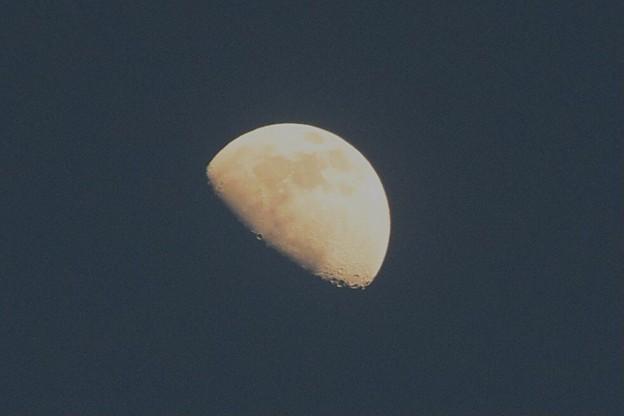 月齢9の月@湘南・鵠沼海岸 #湘南 #藤沢 #海 #波 #wave #surfing #sea #mysky #moon #月