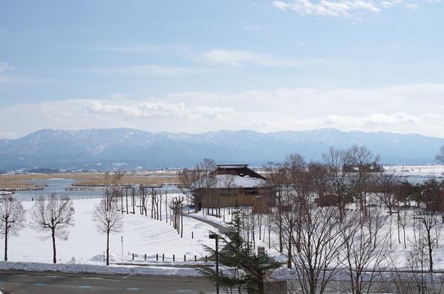 福島潟180203