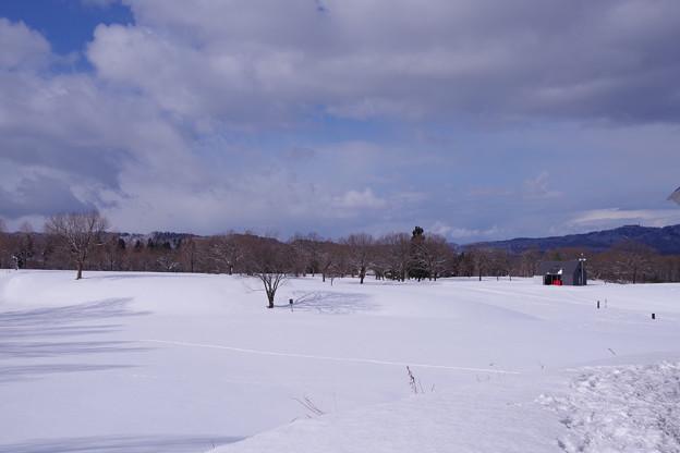 Photos: A snowscape