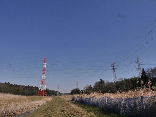 Photos: P3050492