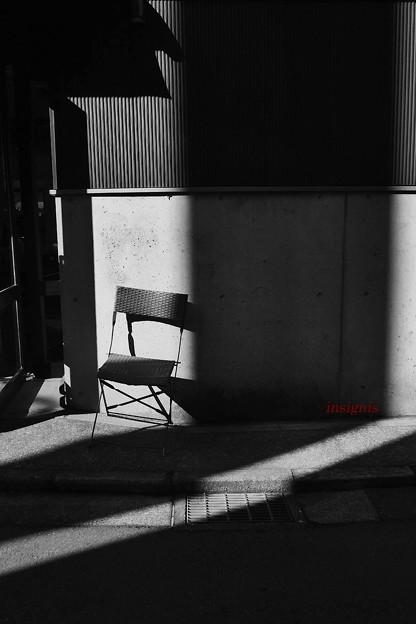 写真: 日なたぼっち.......