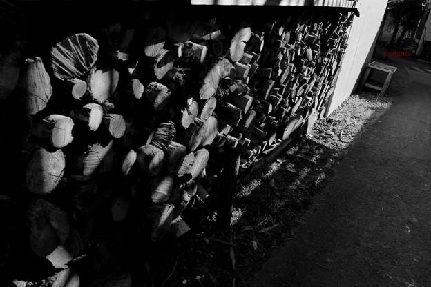 Photos: 孤影.......
