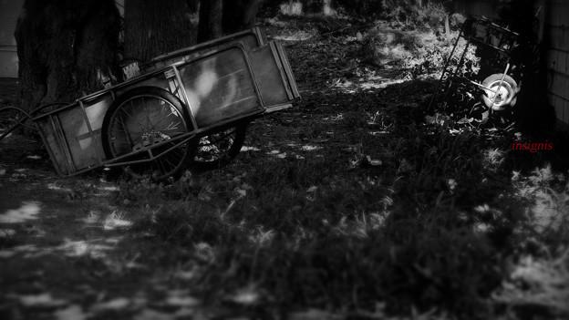 Photos: 車輪の唄.......