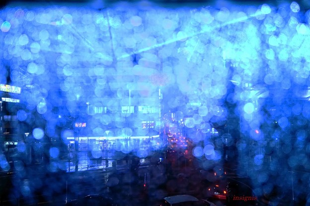 Photos: 雨.......