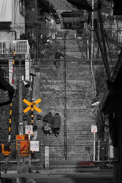 大人の階段.......