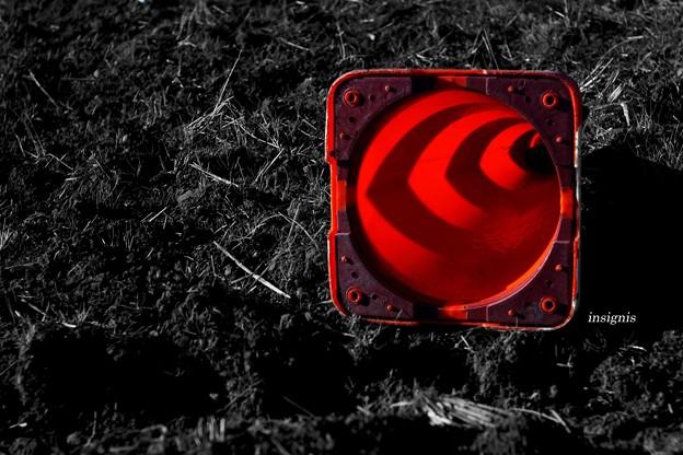 赤いめざめ......