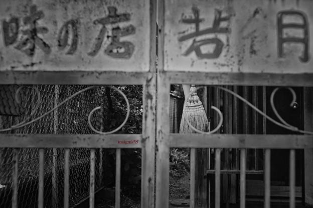 Photos: 座敷帚.......