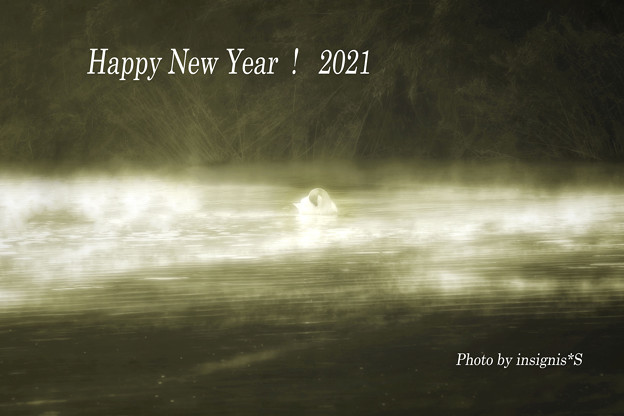 Happy New Year!2021