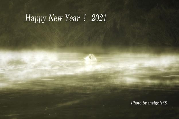 Happy New Year!2021