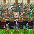 Photos: 栄おばあちゃんの花祭壇