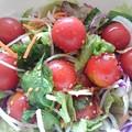 プチトマトが主役のサラダ