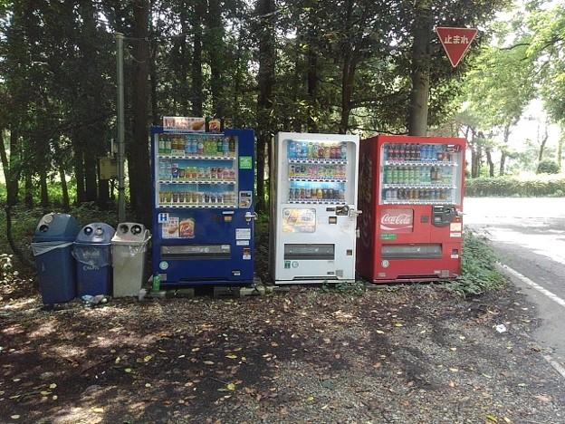 森の中の自動販売機
