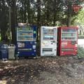 Photos: 森の中の自動販売機