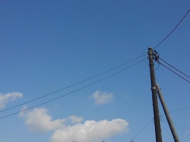 電柱の斜め下に雲が見えた!!