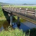 Photos: 地元の川(8月20日)