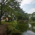 Photos: 烏ヶ森公園の池の道(8月10日)