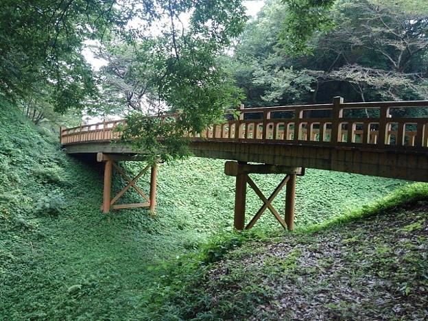 【2020年8月の思い出】ゆうゆうパークの丘の陸橋