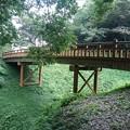 Photos: 【2020年8月の思い出】ゆうゆうパークの丘の陸橋