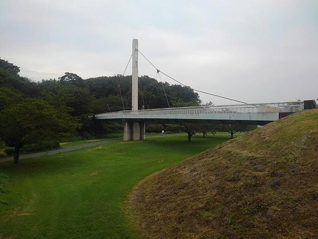 【2020年8月の思い出】ゆうゆうパークの白い陸橋