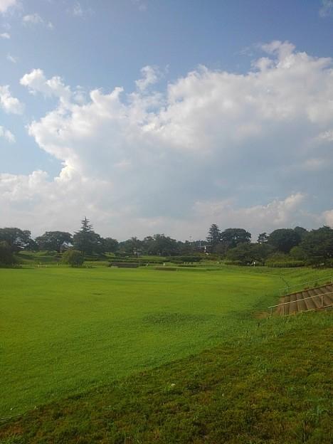 長峰公園の芝生広場が見える景色(8月15日)