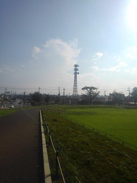 長峰公園の入口近くの歩道(8月15日)
