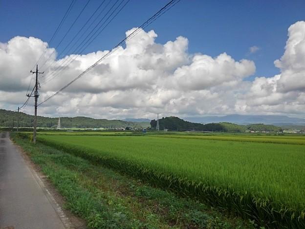 田園地帯と入道雲(8月27日)