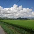 Photos: 田園地帯と入道雲(8月27日)