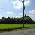Photos: 郊外の道の景色(8月29日)
