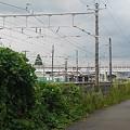 Photos: 線路沿いの道からの眺め(8月30日)